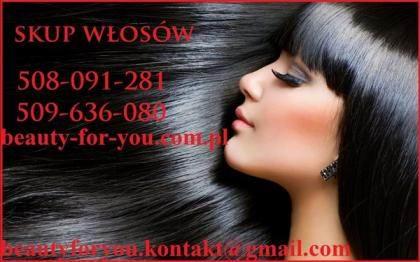 Skup włosów korespondencyjny cena do 5000 zł za kilogram
